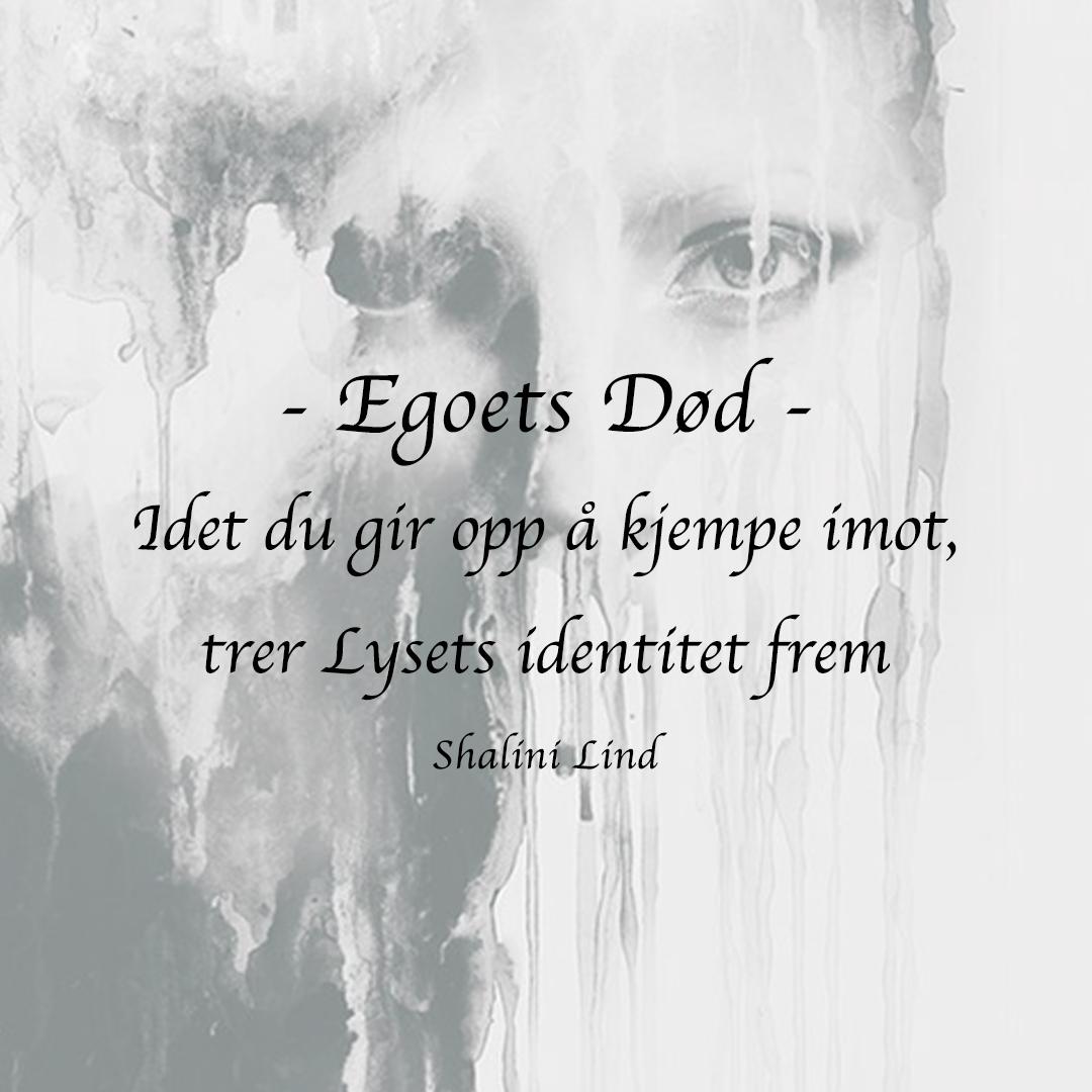 INSTA-egoets-død